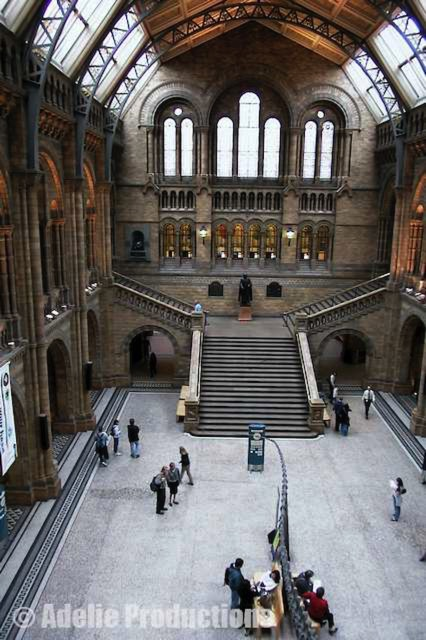 Part 4 Reflections Entrance Hall Natural History Museum London Beyond The Dinosaur And Up Some Stairswas A Statue Of Richard Owen